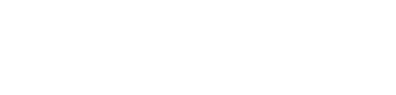 Voyager Software
